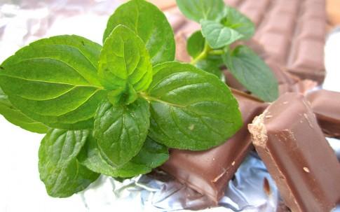 Schokominze (Pflanze)