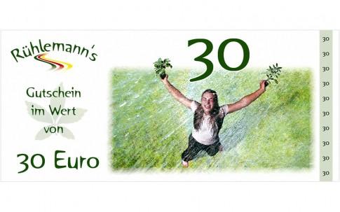 Gutschein im Wert von EURO 30,- (Gültig bis 31.12.2019)