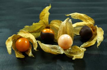Kraeuter und Schokolade 2