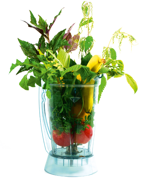 Green Smoothies 1
