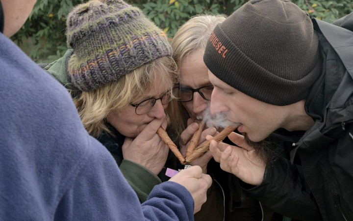tabak-aus-dem-eigenen-garten