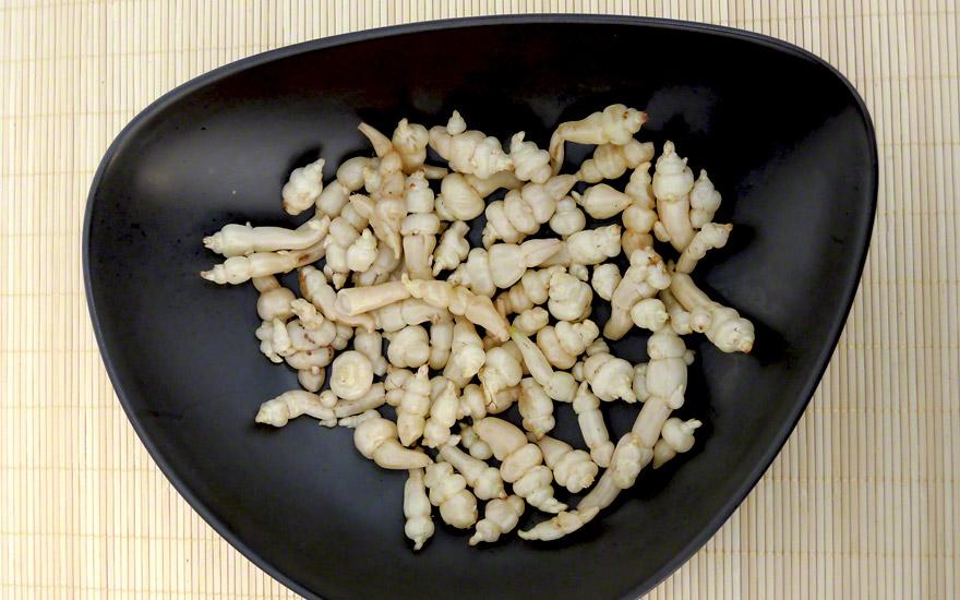 Knollenziest (Pflanze)