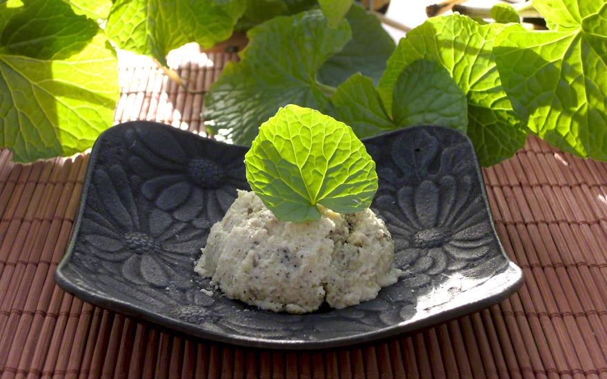 Wasabi, Japanischer Meerrettich (Pflanze)